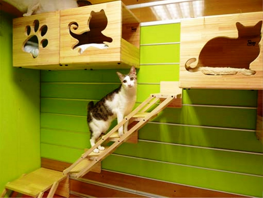 2-stylish-cat-house-5.jpg