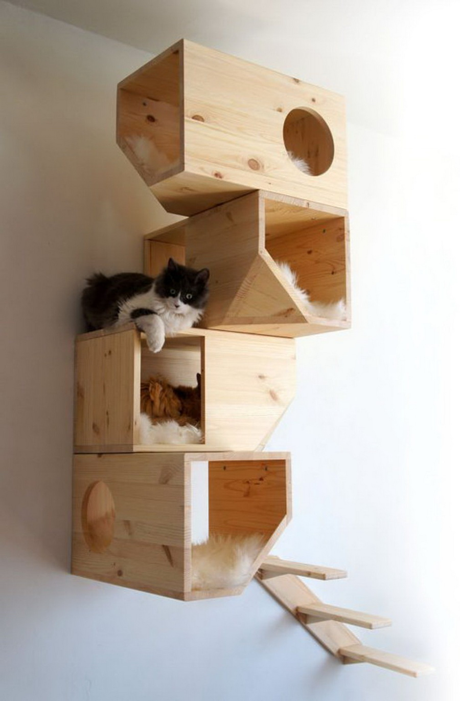 Arbre-a-chat-box.jpg